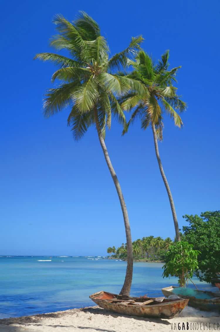 République dominicaine en sac à dos palmier