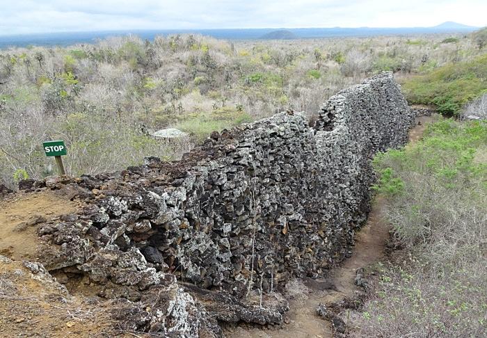 voyage aux Galápagos mura
