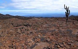 voyage aux Galápagos volcan sierra negra