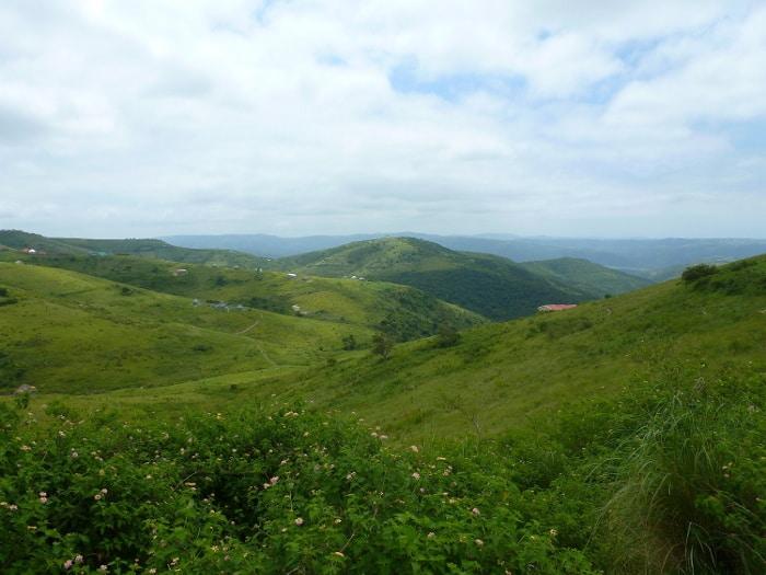 Destination coup de coeur Transkei-Mdumbi Belette rousse