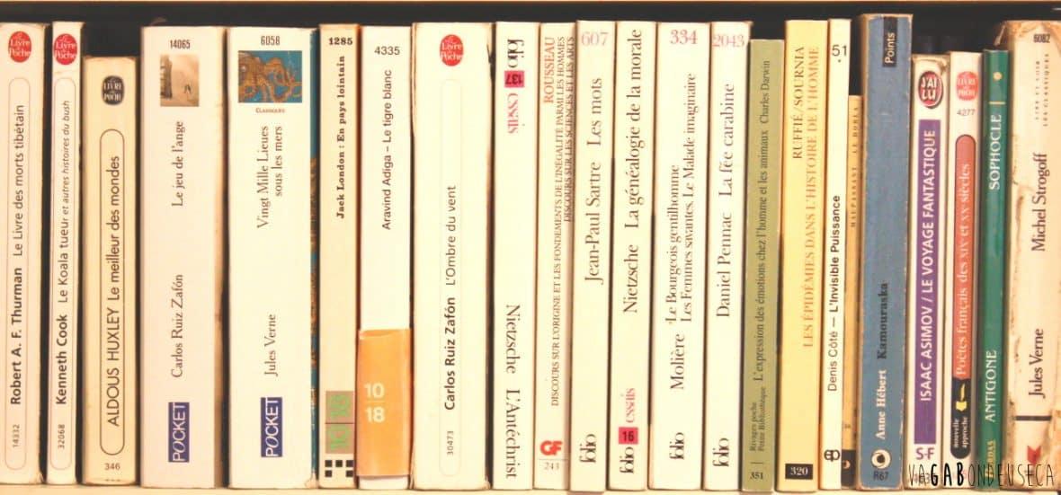 Quoi lire en voyage