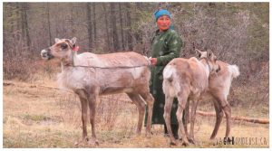 Quoi faire en Mongolie: visiter les Tsataans et rencontrer un chaman