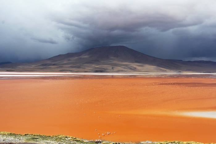 Destination coup de coeur Laguna-Colorada_HappyUsBook