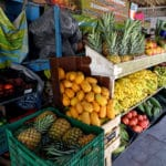 Fruits Sayulita Mexique
